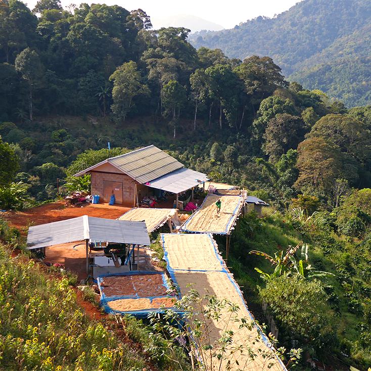 Trocknungsplatz Thailand Akha Hilltribes